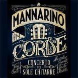alessandro-mannarino-tour-2013