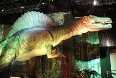 days-of-the-dinosaur